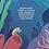 Thumbnail: L'incredibile viaggio di Flip la coronula