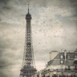 Dans la brume de Paris