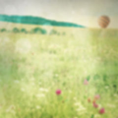 série photographie artistique paysages de nature en Europe, paysage de printemps