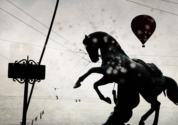 Jour 40 St Petersbourg Le cheval