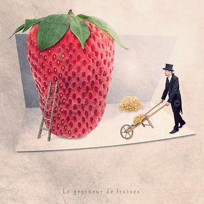 Le graineur de fraises.jpg