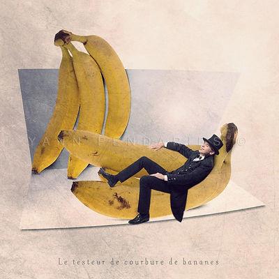 Le testeur de courbure de bananes.jpg