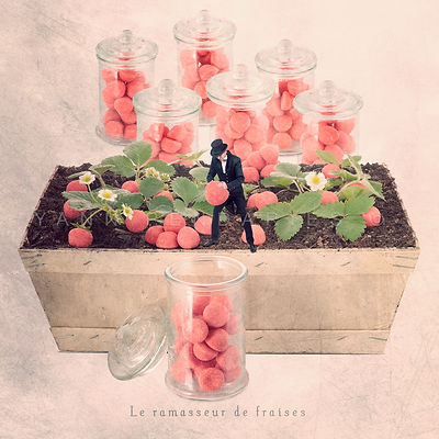 Le ramasseur de fraises