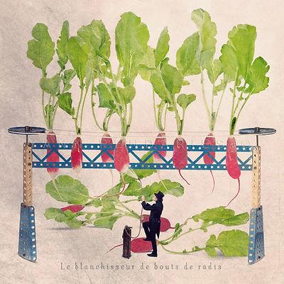 Le blanchisseur de bouts de radis.jpg