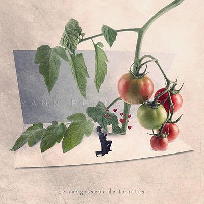 Le rougisseur de tomates.jpg
