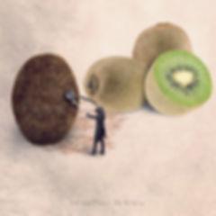 Le coiffeur kiwi.jpg