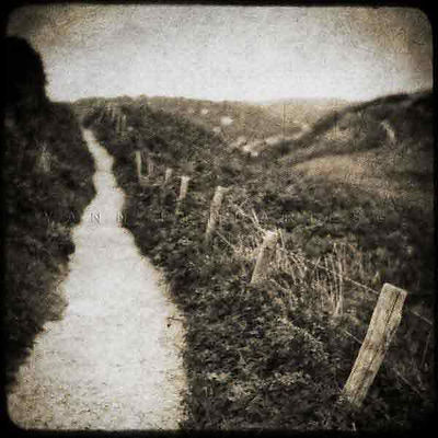 série photographie artistique paysages en noir et blanc, Le chemin Étretat Normandie