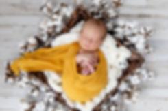 ArchibaldNewborn-KateBucklesPhotography-