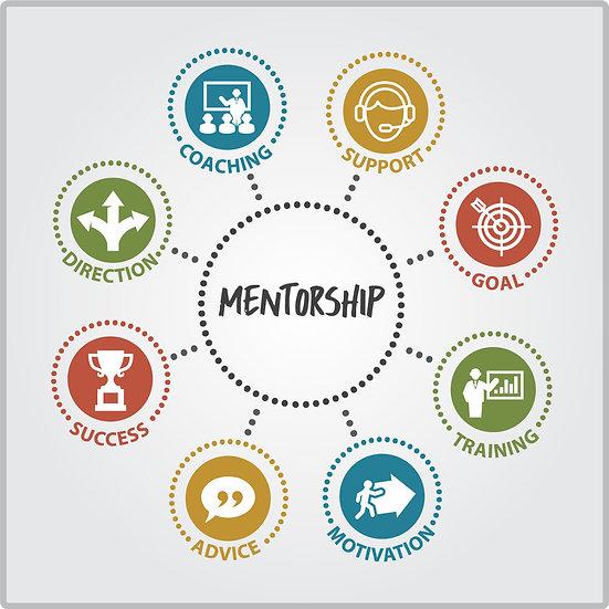 Executive mentorship