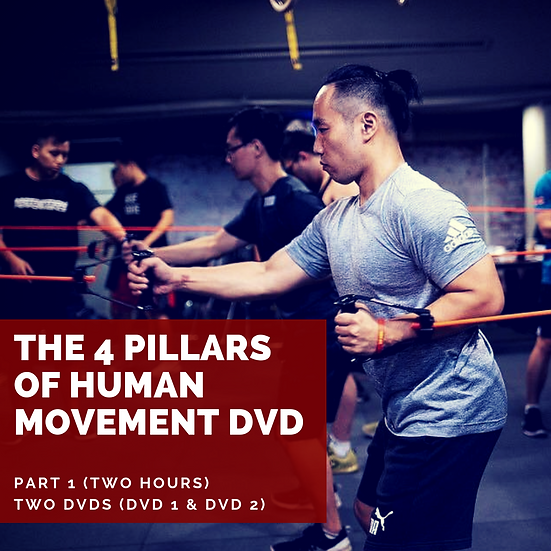 The 4 Pillars of Human Movement DVD (Part 1) Two Hours