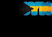 BYN logo.png