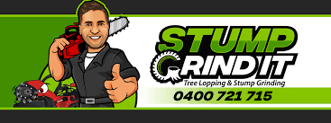 Stump Grind It