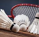 Badminton.png