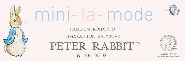 PETER RABBIT BANNER Cover Line Sheet.jpg