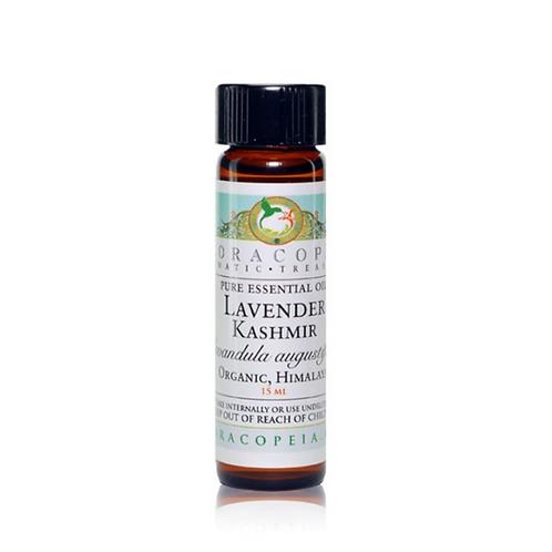 Lavender Kashmir Essential Oil