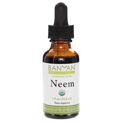 Neem Liquid Extract