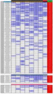 Ranking-Selección-(Fecha-1-2020).jpg