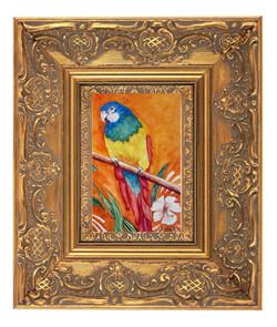 Parrot on Orange 2