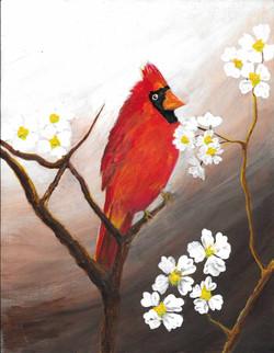 DESCRIPTION: Cardinal 3