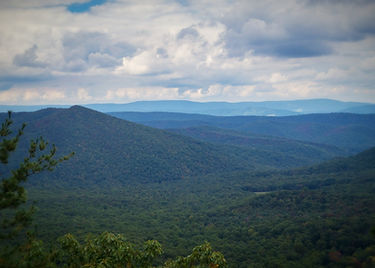 View form Trout Run overlook