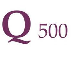 q500b.JPG
