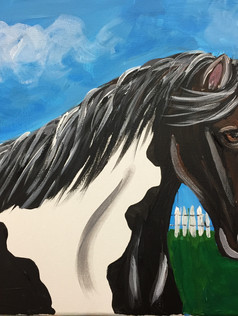 Horse Black/White