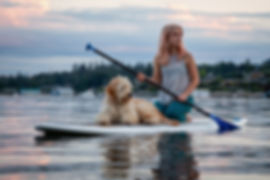 teach-dog-stand-up-paddle-board.jpg