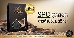 SAC-01.jpg