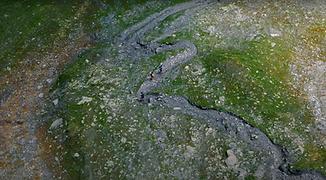 Capture d'écran 2021-05-18 à 16.15.42.