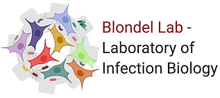 Logo Blondel Lab.tiff