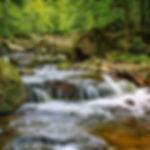 waters-3022515_1920.jpg