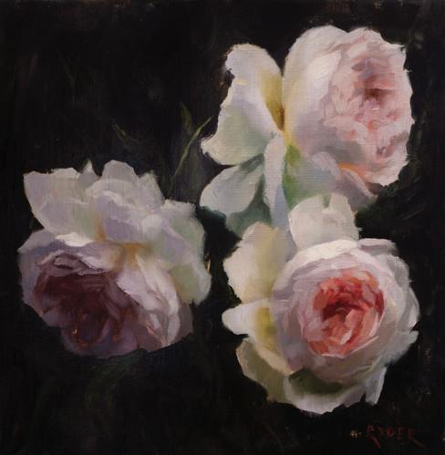 Three garden roses