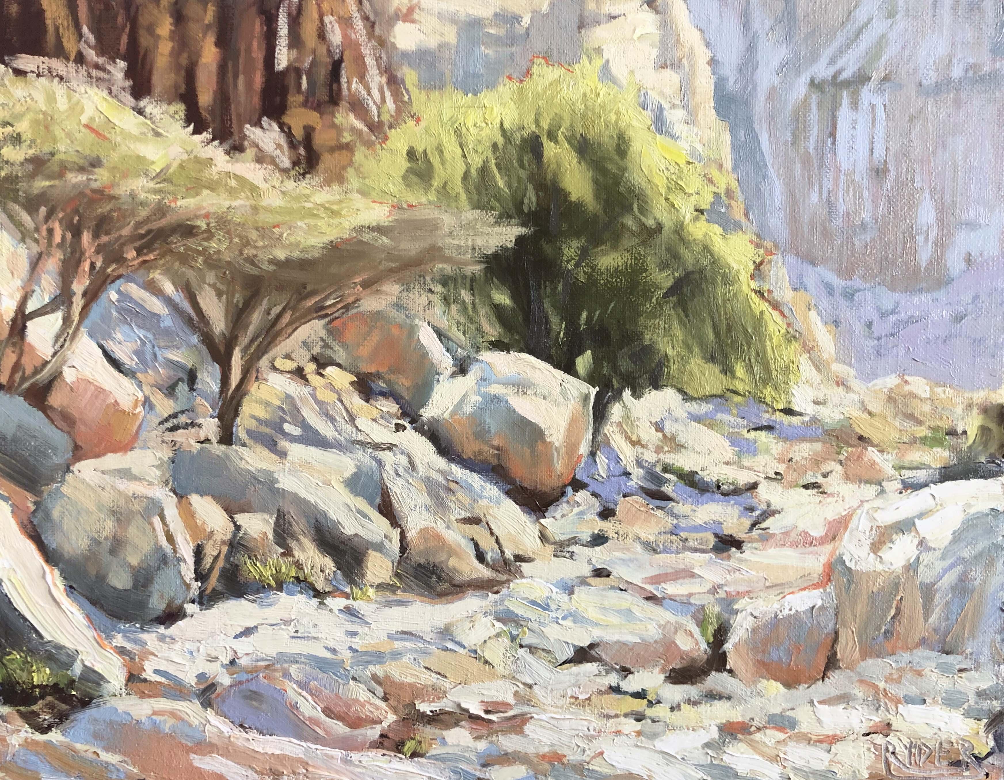 Naqab trail