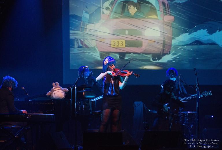 The Neko Light Orchestra Live à la Gespe, Tarbes, 2017.