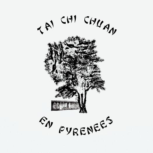 Logo et site web pour l'association Tai-Chi Chuan En Pyrénées.