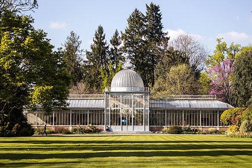 L'orangeraie - Jardin Massey, Tarbes