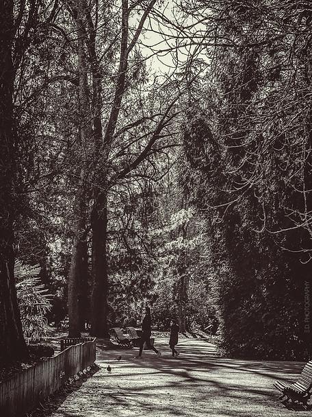 Au Jardin Massey, Tarbes