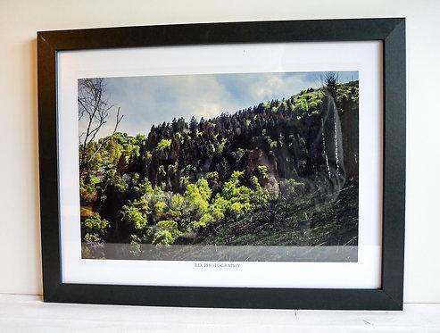 "Cadre Photo 45x34cm ""Spring Trees"""