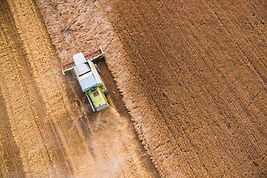 Eagle eye view of combine during harvest