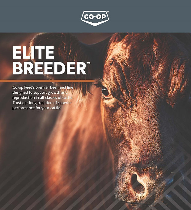 20014 Elite Breeder Bagstuffer_Page_1.jp