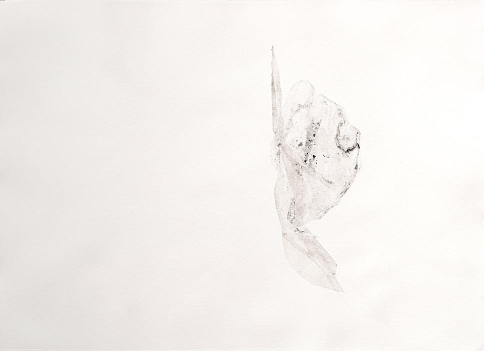 Passo I - Pó 56x41cm - Gravura Mono