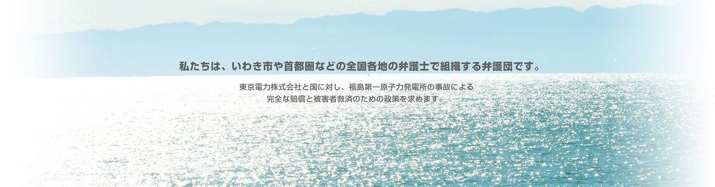 私たちは、いわき市や首都圏などの全国各地の弁護士で組織する弁護団です。東京電力株式会社と国に対し、福島第一原子力発電所の事故による完全な賠償と被害者救済のための政策を求めます。