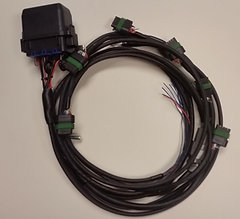 Junction City Wire Harness on wire leads, wire clothing, wire holder, wire ball, wire cap, wire sleeve, wire nut, wire connector, wire lamp, wire antenna,