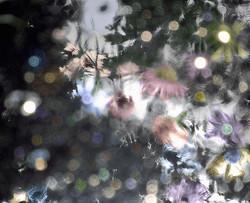 Reflets aquarelle