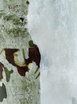 platane de glace