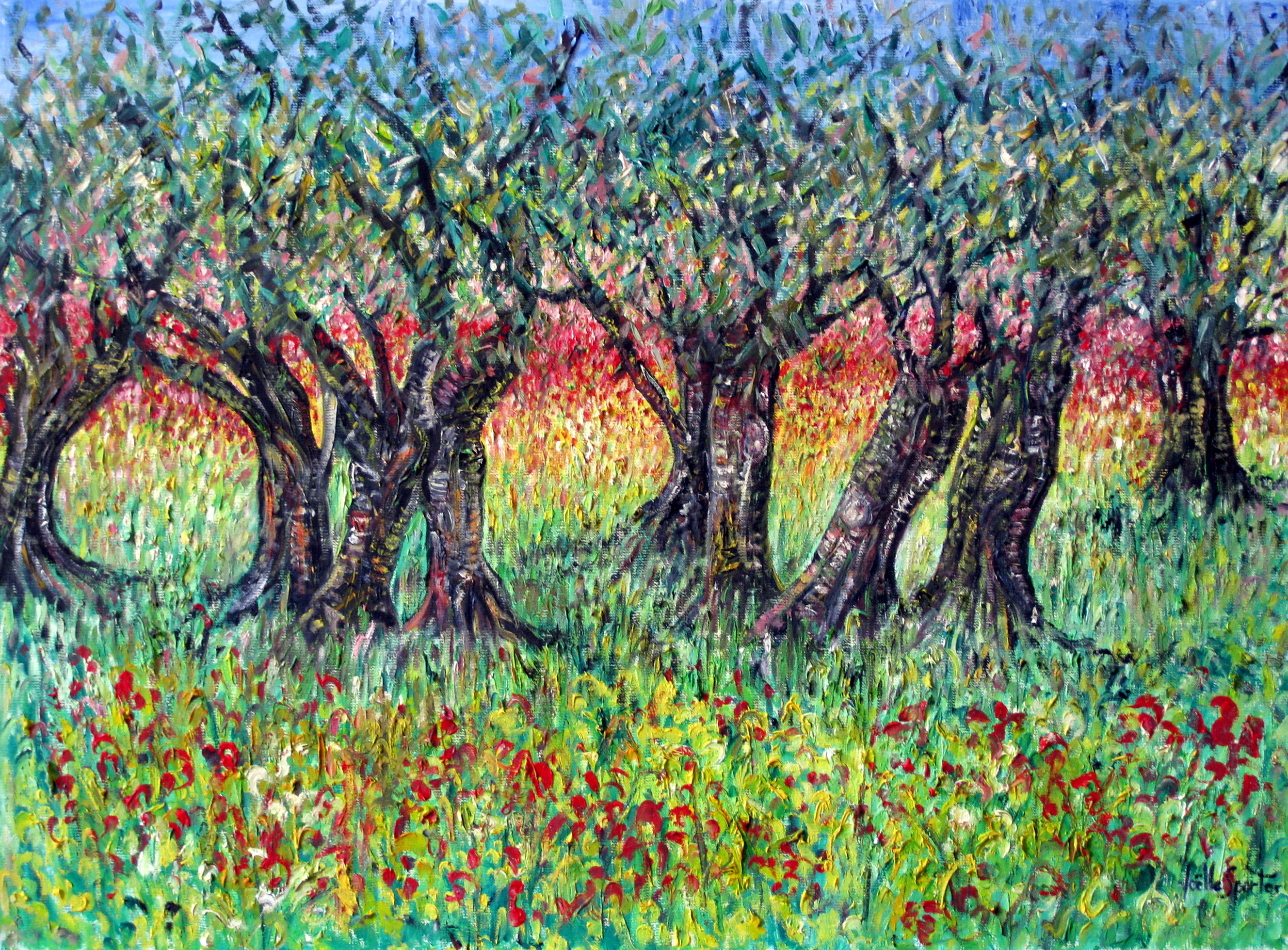 Bordure d'oliviers