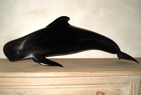Globicéphale 70cm