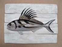 Poisson coq 19x25cm
