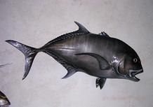 Carangue ignobilis noire 96cm