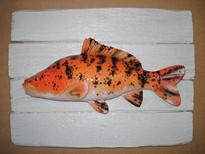 Carpe koï (2) 19x25cm